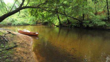 Salles Saugnac, parcours sportif sur la Leyre, La petite amazon, naturel, arcachon